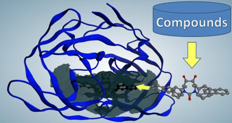 受容体の立体構造に基づくリガンド設計