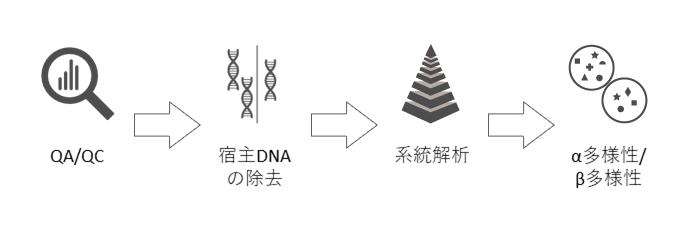 解析 メタゲノム CiNii Articles